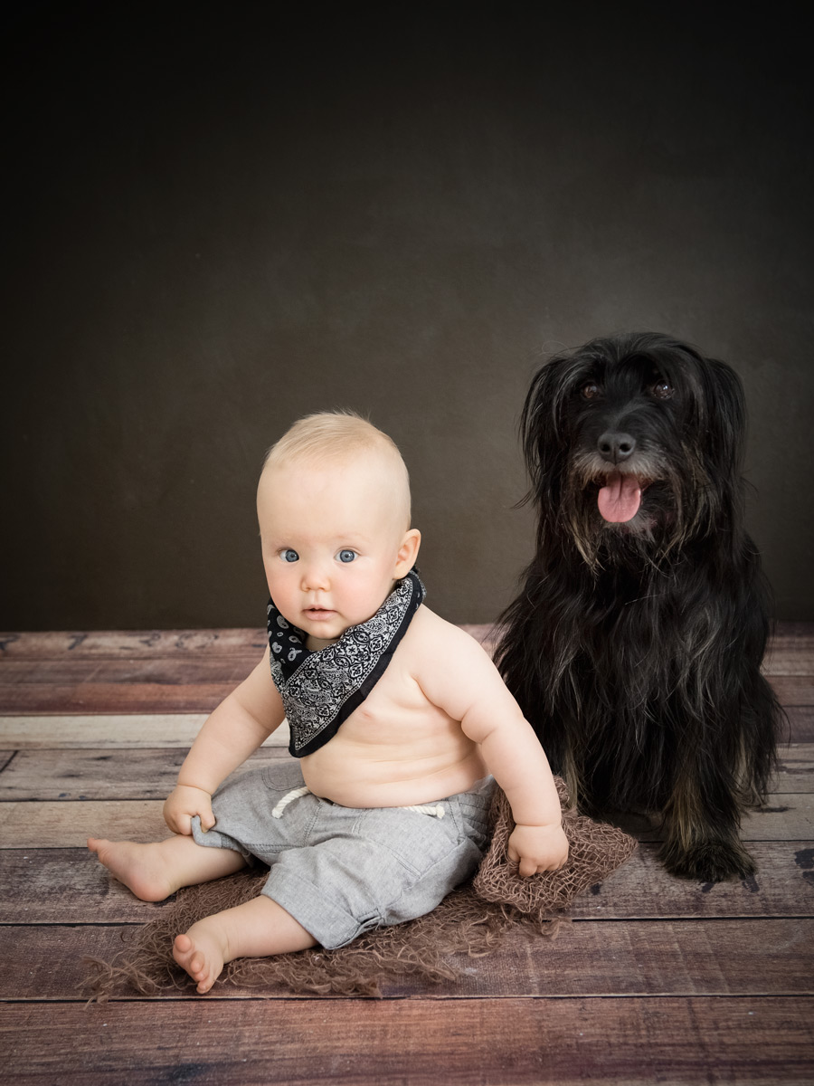 baby-hund-fotografie