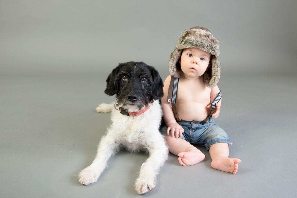 tierfoto-baby-hund-momentegrafie